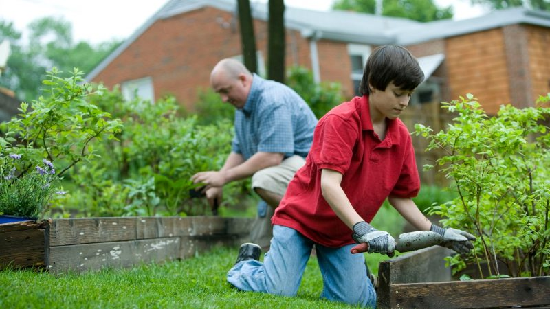Bewässerungssystem Arten: 4 Möglichkeiten für deinen Garten