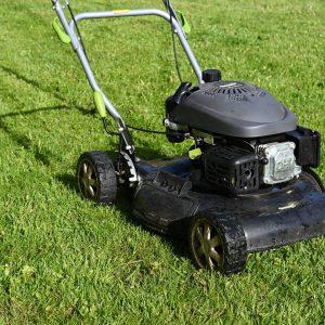 Bei welcher Temperatur sollte man Rasen mähen?
